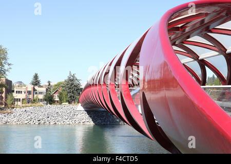 Peace  Bridge - foot bridge across the Bow River in Calgary - Stock Photo