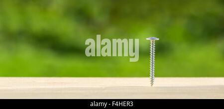 Screw screwed into wooden plank, closeup - Stock Photo