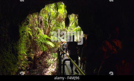 Tourists entering the Thurston Lava Tube in Hawaii Volcanoes National Park - Stock Photo