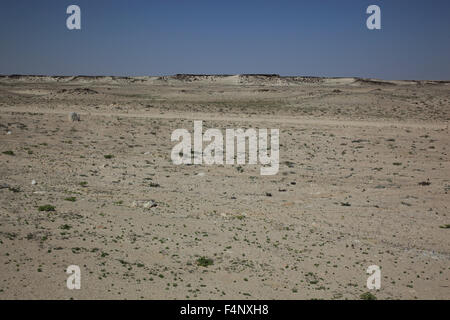 Landscape in the Empty Quarter, ar-Rub 'al Khali, Oman - Stock Photo