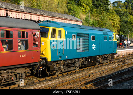 Class 35 Hymek D7076 arriving at Bewdley station on the Severn Valley Railway - Stock Photo