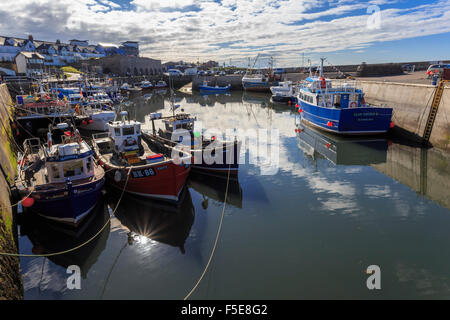 Colourful fishing boats in harbour and village beyond on a sunny summer evening, Seahouses, Northumberland, England, - Stock Photo