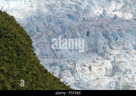 Franz Josef Glacier, a glacier melting due to climate change, Franz Josef, South Island, New Zealand - Stock Photo