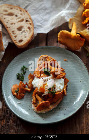 Wild girolle mushrooms and poached egg on toast - Stock Photo