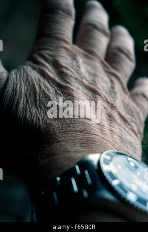 old mans hand and watch - Stock Photo