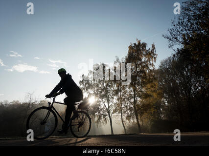 Berlin, Germany. 4th Nov, 2015. A cyclist rides on his bicycles through the early morning mist in the Tiergarten - Stock Photo