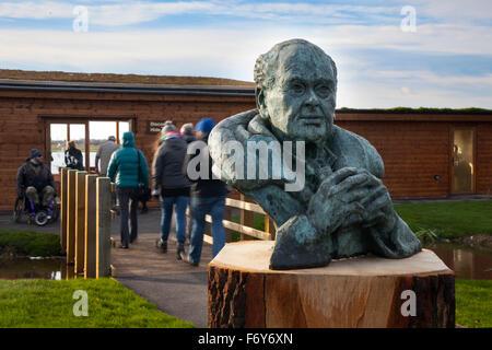 Burscough, Lancashire, UK. 21st Nov, 2015. New Discovery Hide & Walter Scott sculpture  opens at Martin Mere Bird - Stock Photo