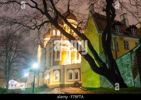 Alexander Nevsky Cathedral by night. Tallinn, Estonia - Stock Photo