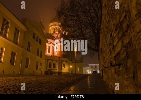 Night view on illuminated Alexander Nevsky Cathedral, Tallinn, Estonia - Stock Photo