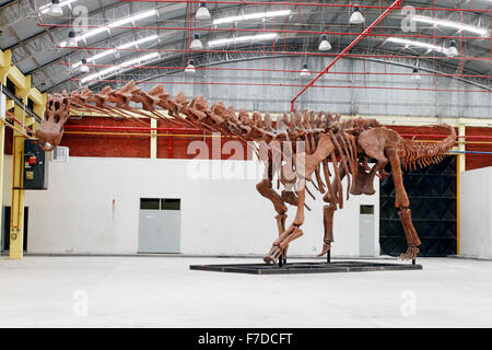 Worlds largest dinosaur reconstructed skeleton at Predio Ferial, Trelew, Chubut Region Patagonia, Argentina. Discovered - Stock Photo