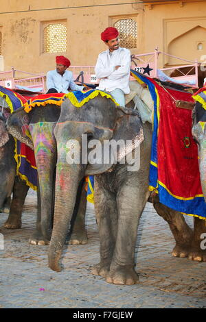 Elephants waiting for tourists to carrying them to the Amber Fort, Amer 11km from Jaipur, Rajasthan, India - Stock Photo