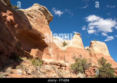 Ancestral puebloan cliff dwelling in Canyon of the Ancients National Monument, Colorado. - Stock Photo