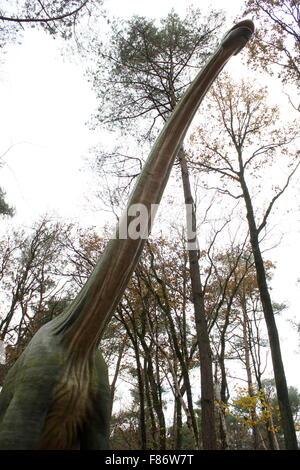 Model of a towering giant Brachiosaurus, full-size & lifelike dino statue at  Dinopark Amersfoort Zoo, Netherlands, - Stock Photo