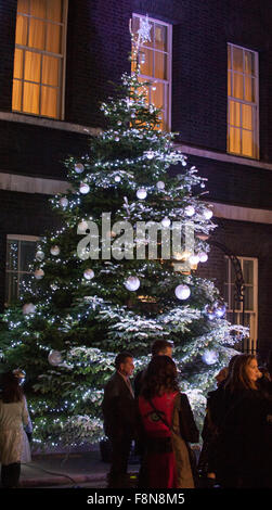10 Downing Street, London, UK. 10th December, 2015. The Downing Street christmas tree is lit, watched by PM David - Stock Photo