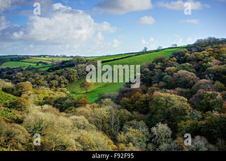 A late Autumn landscape showing lovely colorful rural countryside,farmland and woodland,blue sky,white clouds,on - Stock Photo