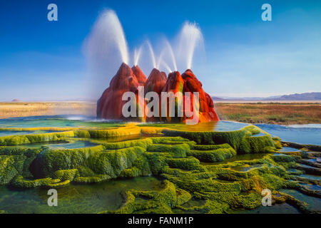 The continuous Fly Geyser of Fly Ranch is on private land in Nevada, USA - Stock Photo