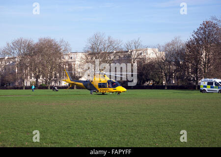 Yellow and black police helicopter landed in Regent's Park, London, UK - Stock Photo
