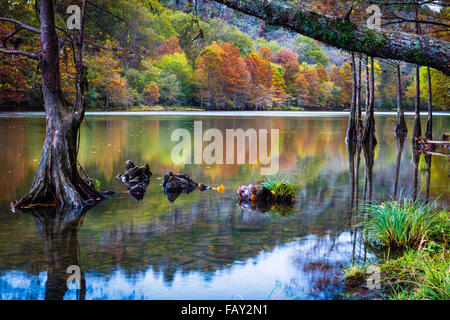 Beavers Bend State Park is a 1,300 acres state park located near Broken Bow, Oklahoma - Stock Photo