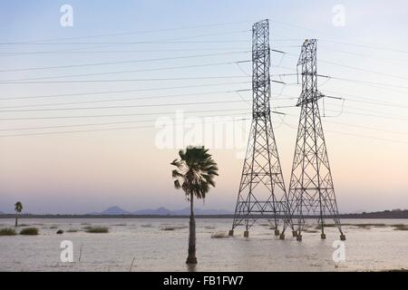 Electricity pylons in waterlogged field, Taiba, Ceara, Brazil - Stock Photo