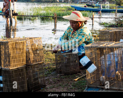 A local woman preparing fishing tool on the lake side. - Stock Photo
