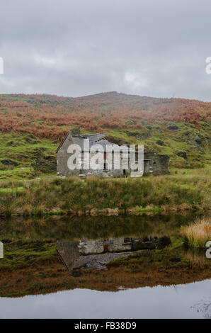 Beautiful walk reveals the landscape of a ruined cottage reflected in a pond, in the Welsh hills above Garneddwen, - Stock Photo