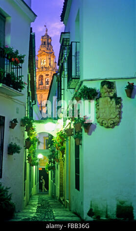 Córdoba.Andalusia. Spain: Calleja de las Flores, in  the background  Bell tower or minaret of the mosque-cathedral - Stock Photo