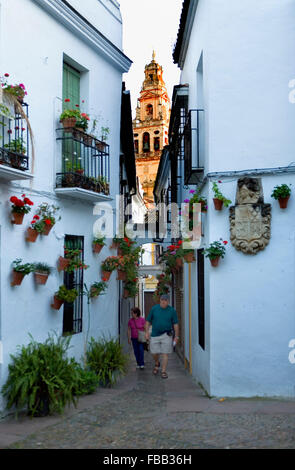Cordoba.Andalusia. Spain: Calleja de las Flores, in  the background  Bell tower or minaret of the mosque-cathedral - Stock Photo