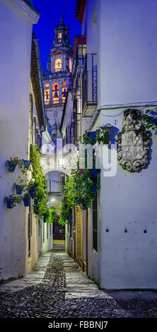 Spain, Andalusia, Cordoba. Calleja de las flores, Street of flowers in old town at dusk - Stock Photo