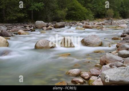 Reinbach in den Dolomiten, Alpen - Reinbach in Dolomites, Alps - Stock Photo