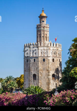 Spain, Andalusia, Province of Seville, Seville, view of Torre del Oro, a 13th century twelve-sided military watchtower - Stock Photo
