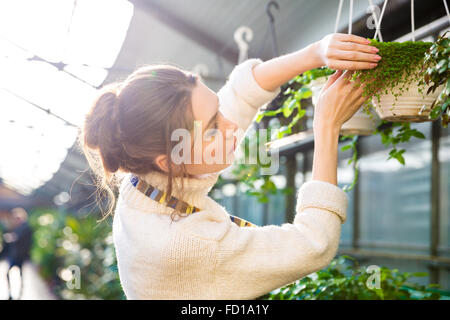 Tender pretty female gardener working with plants and flowers in garden center - Stock Photo