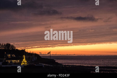 a streak of bright orange light cutting across a sun set dark sky on the coast with an outside pine Christmas tree - Stock Photo