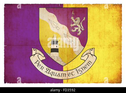 Flag of the Irish county Wexford created in grunge style - Stock Photo