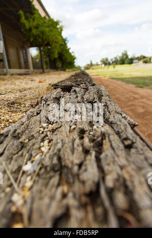 closeup of rotting timber at a disused railway station. - Stock Photo