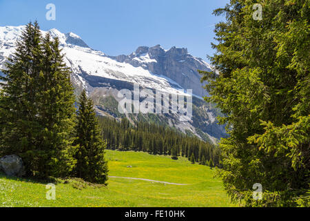 Amazing view of Swiss Alps and meadows near Oeschinensee (Oeschinen lake), on Bernese Oberland, Switzerland - Stock Photo