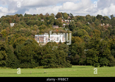 View of apartment block from across park, Whyteleafe Surrey - Stock Photo