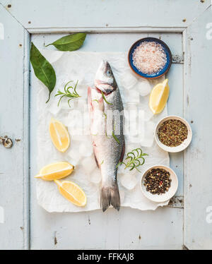 Fresh uncooked Mediterranean seabass fish with lemon, herbs, ice and spices on rustic blue wooden board backdrop, - Stock Photo