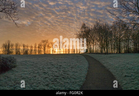 Campbell Park in Milton Keynes on a frosty January morning. - Stock Photo