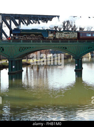 Peterborough, Cambridgeshire, UK. 24th February, 2016. The Flying Scotsman steam train crosses the River Nene in - Stock Photo