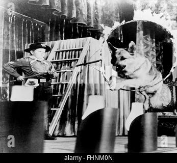 LEE AAKER, RIN TIN TIN, THE ADVENTURES OF RIN TIN TIN, 1954 - Stock Photo