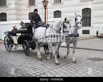 A romantic way of seeing Vienna is a comprehensive  sightseeing tour  on a horse-drawn carriage. - Stock Photo