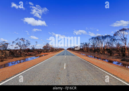 width of empty sealed road in Western Australia after severe bushfires destroying gumtree woods around. Rain eased - Stock Photo