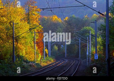 rapid-transit railway line in autumn, Germany - Stock Photo