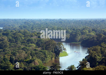 View of rainforest and rivers in Tortuguero National Park, Limon, Costa Rica, Central America - Stock Photo