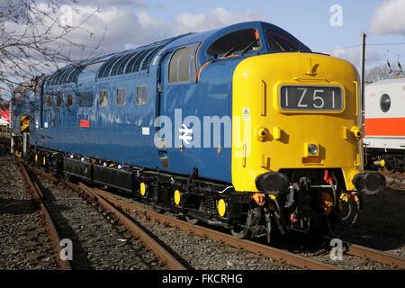 English Electric Class 55 'Deltic' diesel locomotive 55009 'Alycidon' - Stock Photo