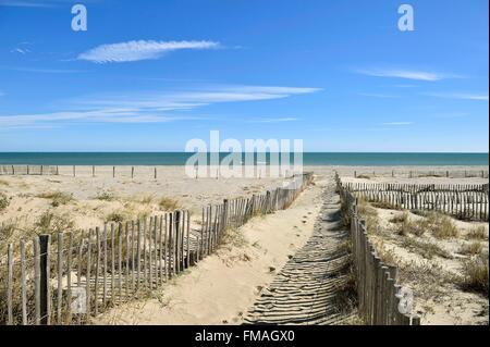 France, Pyrenees Orientales, Canet en Roussillon, the beach - Stock Photo