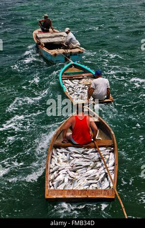 Cuba, Ciego de Avila, Jardines del Rey, Cayo Guillermo, File fish laden boats - Stock Photo