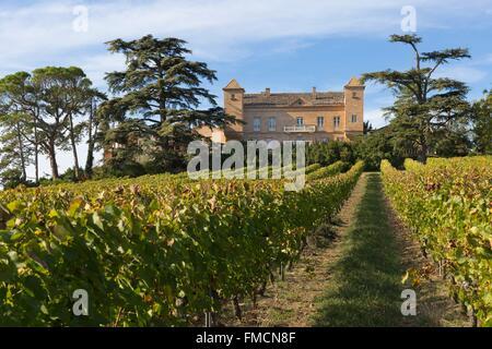 France, Tarn, Lisle sur Tarn, chateau d'Escabes in the Gaillac vineyard - Stock Photo
