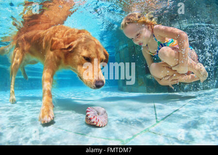 Child play with fun and train golden labrador retriever puppy in swimming pool - jump and dive underwater to retrieve - Stock Photo