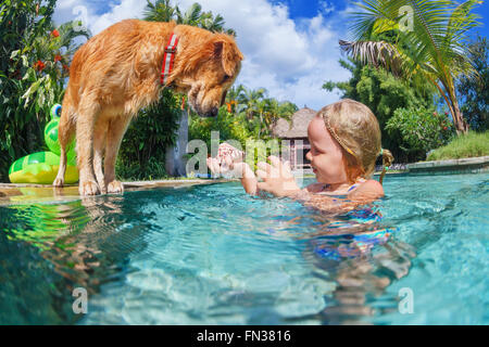 Little child play with fun and train golden labrador retriever puppy in swimming pool -  dive underwater to retrieve - Stock Photo
